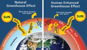 This was a picture of the greenhouse effect.