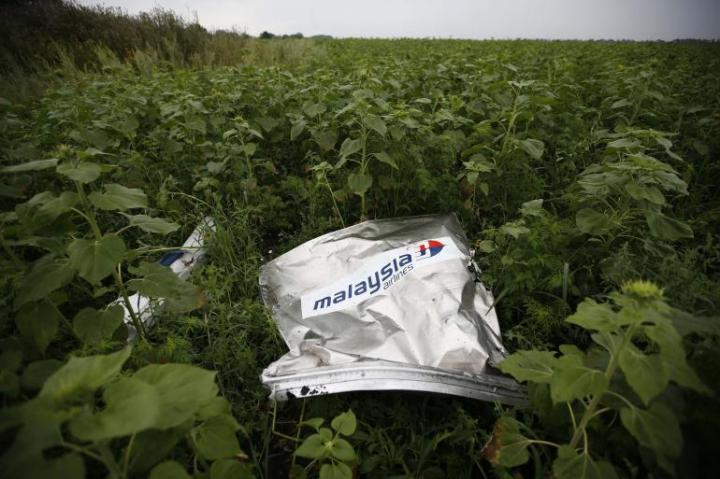 mh17_wreckage_sunflowers